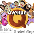 BWW Review: AVENUE Q at Theatre In The Park At Johnson County Arts And Heritage Center