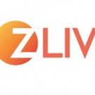 Z Living Schedules Hit Original Series THE BIG FAT TRUTH Marathon for Xmas Day