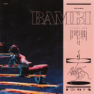 Hippo Campus Release Spotify Single, Special 'Bambi' Vinyl Available Now