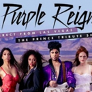 Prince Tribute, Purple Reign, Comes To Worcester