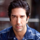 David Schwimmer to Helm PLANTATION! Premiere at Lookingglass Theatre Photo