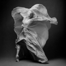 Five Choreographers to Present New Works in National Ballet of Canada's FIVE CREATION Photo
