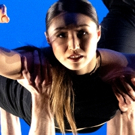 Photo Flash: Dance Lab New York Celebrates Annual Spring Gala Photo