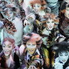 BWW Feature: CATS at Nieuwe Luxor Rotterdam: Return of the Cats! Photo