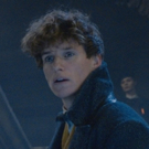 VIDEO: Watch The Official Comic-Con Trailer For 'Fantastic Beasts: The Crimes of Grindelwald'