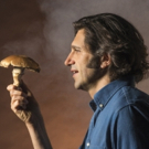 THE MUSHROOM CURE to Offer 'Future of Psychedelic Therapy' Talkback Off-Broadway Photo