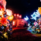 Photo Flash: First Look at The Vaults' Immersive Show SOUNDS AND SORCERY CELEBRATING DISNEY FANTASIA
