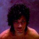 BWW Poll Results: Readers Want a Prince Musical to Head to Broadway Next! Photo