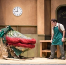 BWW Reviews: MNM's LITTLE SHOP a Star-Studded Suppertime
