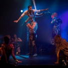 BWW Review: BLACK CAT: BOHEMIA, Underbelly Festival