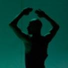 WHITE DARKNESS AND THE LAVENDER FOLLIES Comes Les Ballets De Monte Carlo 7/26