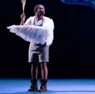 THE MAGIC FLUTE to Cast Its Spell at Artscape This Summer
