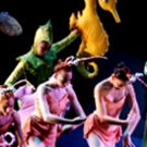 THE LITTLE MERMAID An Enchanted Underwater Adventure Comes to Inland Pacific Ballet Photo