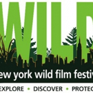 HAPPENING: A Clean Energy Revolution to Be Awarded Best Environmental Film at New York WILD Film Festival