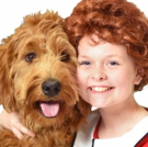 ANNIE Comes to Beef & Boards Dinner Theatre, Today Photo