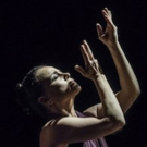 Noche Flamenca Adds New Works to ENTRE TU Y YO Photo