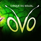 CIRQUE DU SOLEIL's OVO Says Goodbye To London Sunday, March 4 Photo