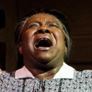 BWW Review: Lorraine Hansberry's Powerful A RAISIN IN THE SUN at American Stage - An  Photo