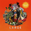 Mellow Mood Announce New Album LARGE Out 4/6