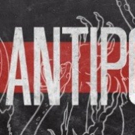 Stray Cat Theatre Presents Annie Baker's THE ANTIPODES Photo