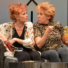 Delaware REP Presents New Comedy By Chisa Hutchinson