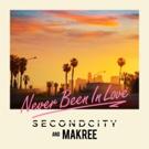 SECONDCITY & Makree Revive 70's Disco Classic NEVER BEEN IN LOVE Photo