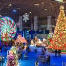 Navy Pier Announces Return of 'Fifth Third Bank Winter WonderFest'