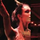 Flat Rock Playhouse Presents Annual Fundraiser DARK NAT REVUE