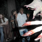 VIDEO: Watch the Cast of STRANGER THINGS Comes Face-to-Face with the Demogorgon at Universal Studios' 'Halloween Horror Nights'