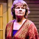 Photo Flash: Shattered Globe Theatre and Theater Wit Presents THE REALISTIC JONESES Photo