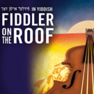Jackie Hoffman, Steven Skybell and Jill Abramovitz Lead the Cast of FIDDLER ON THE  Photo