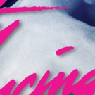 BWW Review: DIRTY DANCING at The Playhouse Photo