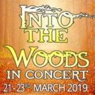 New Theatre Company Bloom Creative Productions Presents INTO THE WOODS IN CONCERT Photo