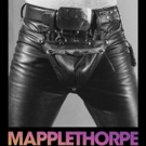 The Guggenheim to Present MAPPLETHORPE Exhibit