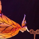 BWW Review: CIRQUE DU SOLEIL LUZIA at Tyson's