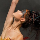 BWW Preview: THE FIREBIRD AND  LA SYLPHIDE at Symphony Hall Photo