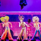 BWW REVIEW: PRISCILLA QUEEN OF THE DESERT, THE MUSICAL, The Fabulously Funny Ultimate Photo