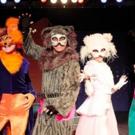 THE CATS Comes to Teatro Municipal Joaquimbenite 3/2 - 3/5 Photo