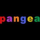 Salty Brine, David Cale, Natti Vogel, Mark Nadler and More Set for November at Pangea Photo