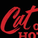 Andrea Lynn Green And Michael Raver To Lead MTC Mainstage's CAT ON A HOT TIN ROOF Photo
