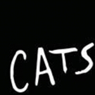 Broadway In Chicago Announces Tickets on Sale Soon for CATS