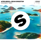 Afro Bros & Sean Kingston Deliver Summer Cross-Genre Track HOW MANY TIMES Photo