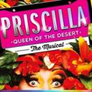 PRISCILLA QUEEN OF THE DESERT 10th Anniversary Tour Finds Full Company