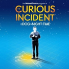 THE CURIOUS INCIDENT OF THE DOG IN THE NIGHT-TIME Will Tour 60 Secondary Schools Across The UK