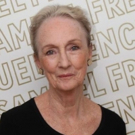 Kathleen Chalfant, Dee Pelletier, and George Bartenieff to Feature in IMAGINE: YEMEN  Photo