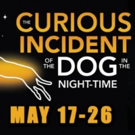 Theatre Tulsa Next Stage Presents THE CURIOUS INCIDENT OF THE DOG IN THE NIGHT-TIME