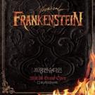 BWW Review: FRANKENSTEIN at Blue Square Interpark Hall, The Revenge Awaits
