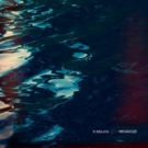 R. Seiliog Releases His New Album MEGADOZE Out 11/30 On Turnstile Music Photo