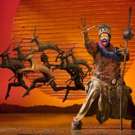 BWW Review: Audiences Feel the Love with THE LION KING at the Fox Cities P.A.C. Photo