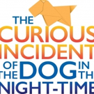 Preston Straus Leads Austin's A CURIOUS INCIDENT OF THE DOG IN THE NIGHT-TIME, Full Cast